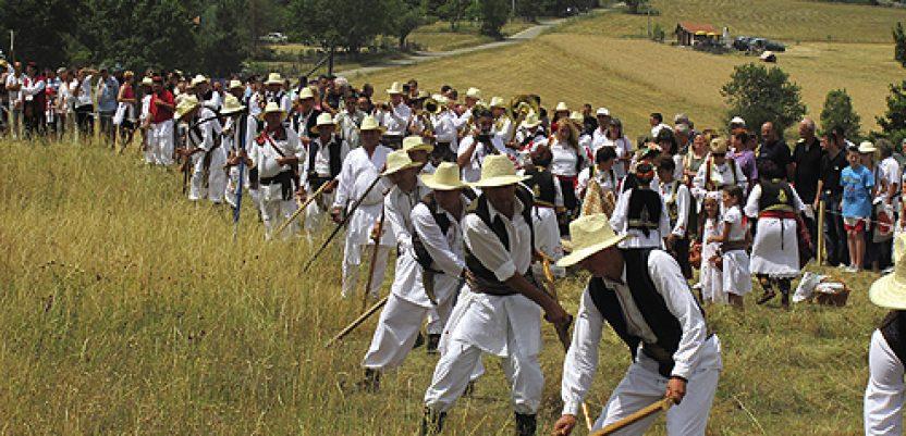 Kosidba na Rajcu od 12. do 14. jula