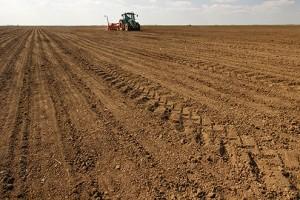 Paorima prodati zemlju za tri milijarde evra