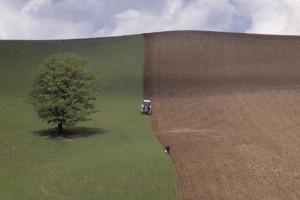 Ni cene ni strategije za poljoprivredno zemljište