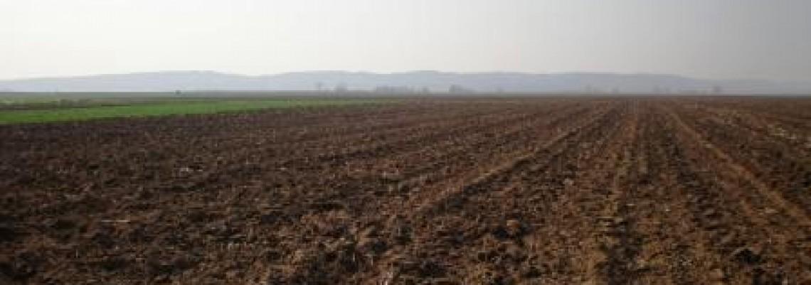Zakup državnog zemljišta: Ažurno tek osam opština