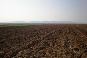 Bez licitacije državnog poljoprivrednog zemljišta u Vršcu