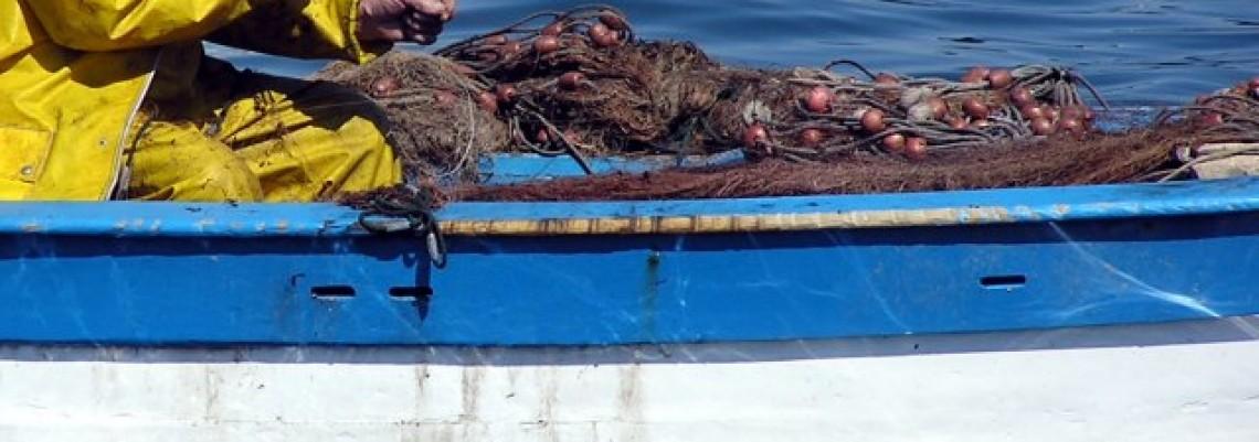 Primorska zemlja, a šačica ribara