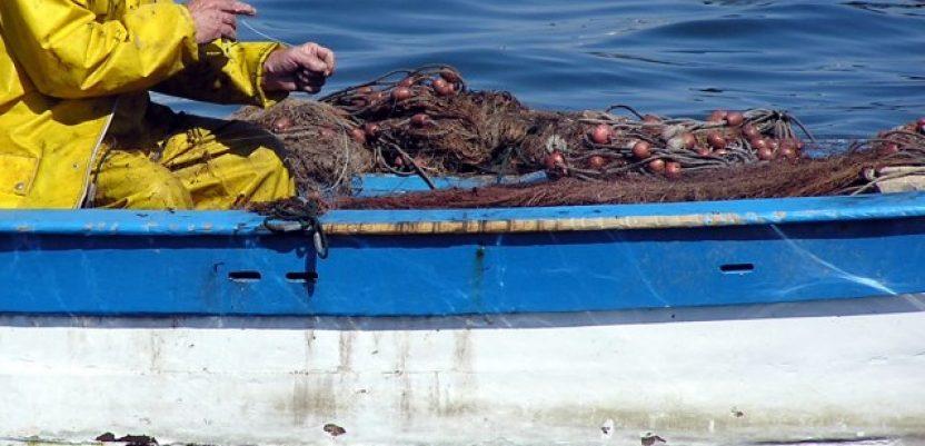 Država da zaštiti ribe od lopova