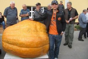 Bundeva od 630 kilograma