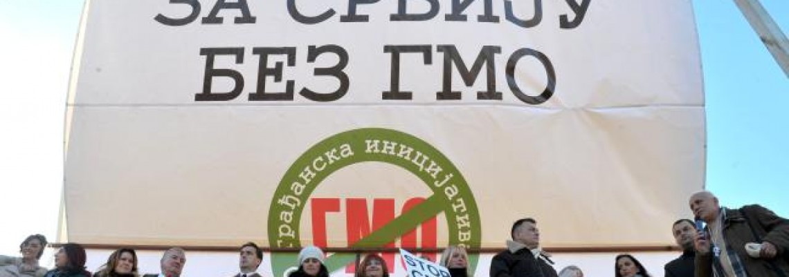 Ševarlić: Razvoj poljoprivrede bazirati bez GMO