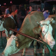 Kraljevo: Ukinuta zabrana prometa stoke