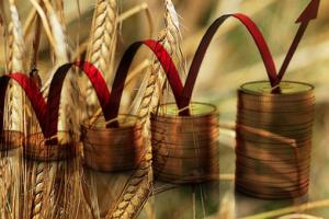 Kako će država štedeti na seljacima