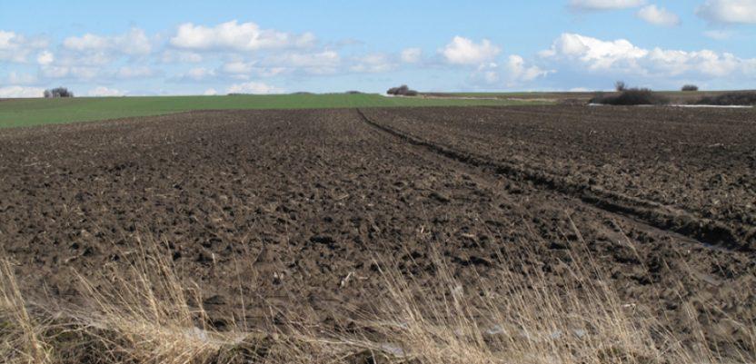 Vršac lider u komasaciji poljoprivrednog zemljišta