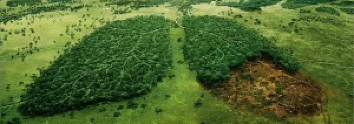 Da li će opstati lokalni budžeti za životnu sredinu?
