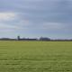 Kinezi bi ulagali u srpski agrar