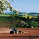 Poljoprivrednici i preduzetnici bankama omiljeni klijenti