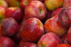 Kakve jabuke jedemo