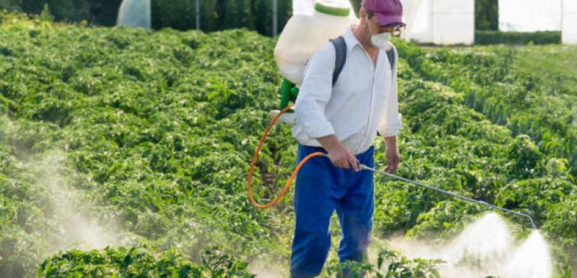 Mnogi pesticidi koji se koriste u SAD zabranjeni su u EU