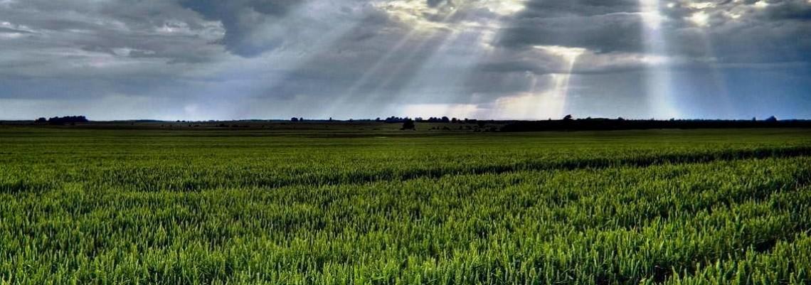 Usvojene izmene Zakona o poljoprivrednom zemljištu