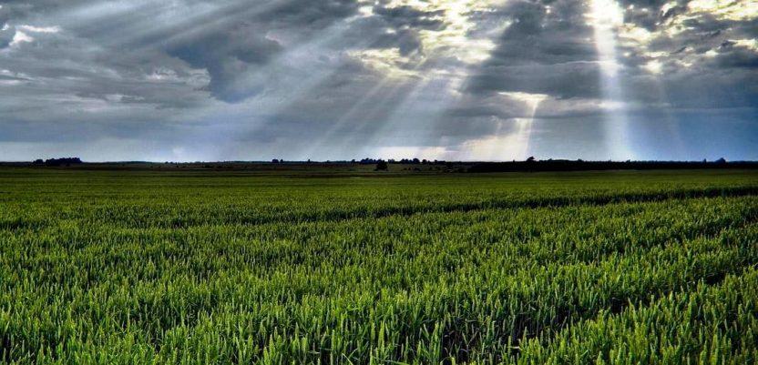 Još dve godine restitucije poljoprivrednog zemljišta