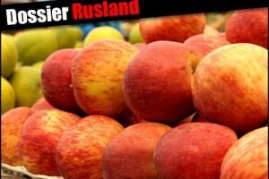 Rusi kupuju više naše hrane, a manje svega ostalog