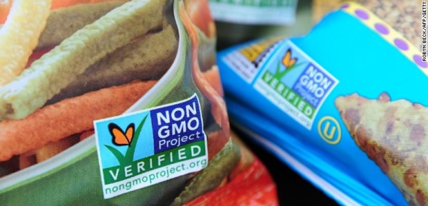 GMO – hrana budućnosti ili bioterorizam