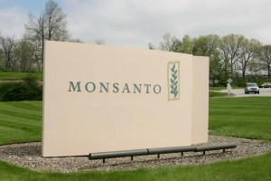 Tribunal i za Monsanto