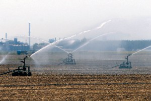 BG – Grad provoda ali i poljoprivrede