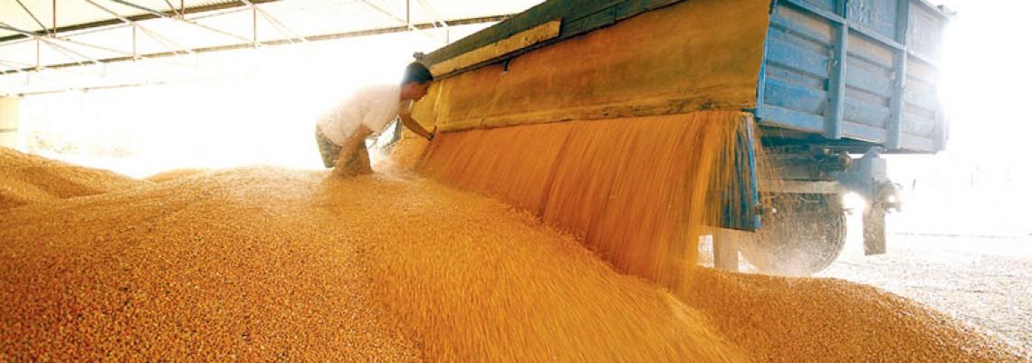 Poljoprivredi trebaju drugačije Robne rezerve