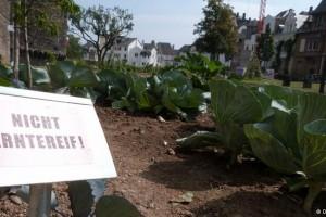 U centru grada: besplatno voće i povrće za svakoga