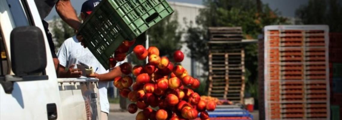 Poljoprivrednici traže pomoć od Brisela zbog ruskog embarga