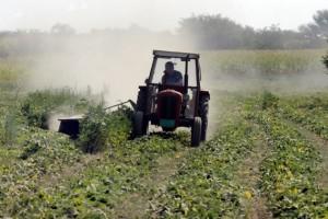 Traktor preorao GM soju