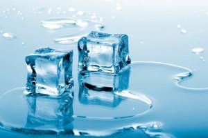Srbija u 2014. izvezla led vredan 300.000 evra