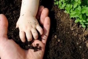 Američko tržište organske hrane vredi 5,5 mlrd $