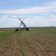 Vojvođanski poljoprivredni kombinati i dalje traže nove gazde