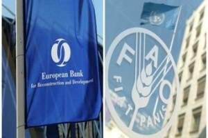 Aktivnosti FAO i EBRD u godini za nama