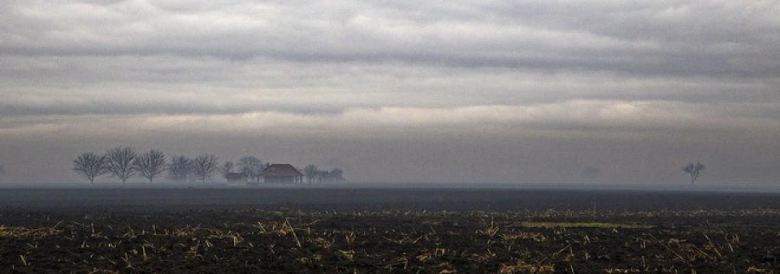 Paori u Somboru traže licitaciju zemljišta