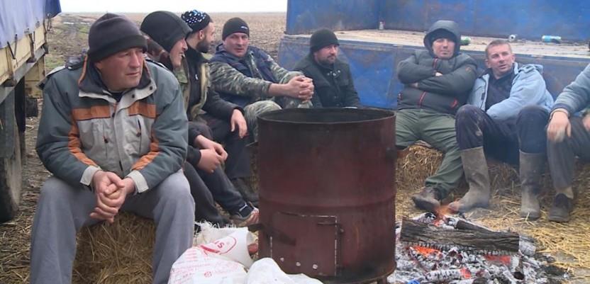 Paori iz Gakova: Opet u državne njive