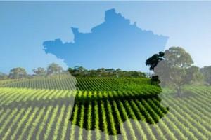Francuska poljoprivreda najjača u EU
