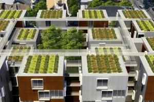 """Sve nove zgrade moraju imati krov """"od biljaka"""""""