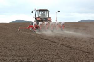 Poljoprivrednici zadovoljni setvom pšenice