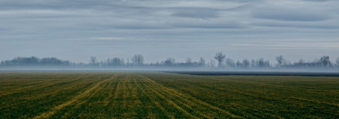 Rešenost da se uvede red u poljoprivredno zemljište
