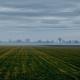"""Zemljište dato """"Tenisu"""" koristiće drugi investitori"""
