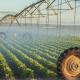 Subvencionisani krediti za poljoprivrednike i ove godine