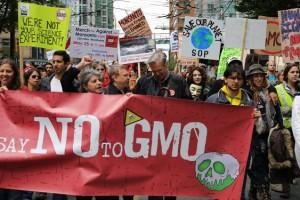 Prvi put manje površina pod GMO u svetu