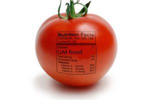"""""""Loš zakon o GMO"""" prepreka za članstvo u STO"""