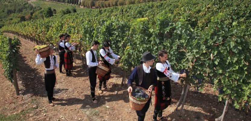Rusi i Izraelci u poseti Topoli