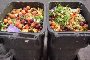 U Srbiji godišnje oko 247.000 tona hrane završi kao otpad