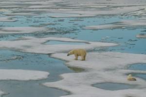 Rekordni rast temperature i štetnih gasova u 2015.