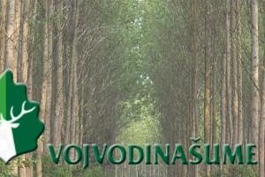 Vojvodinašume: Ne ostavljajte otpad u šumama