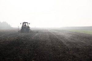 Počela licitacija zemljišta u Somboru