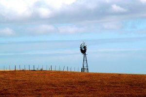 JAR: Vojvodina može da pomogne u oblasti poljoprivrede