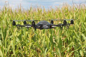 Veštački inteligentni sistemi u poljoprivredi