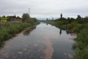 Ekološki pokret Vrbasa: Mora li da smrdi i dokle će?
