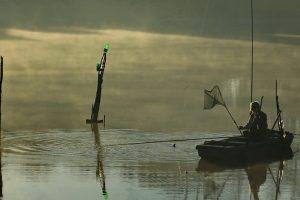 Drastično smanjenje ribljeg fonda